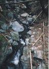 Okutama_river6